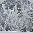 Sne i Svaneke_0544