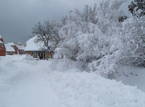 Sne i Svaneke_0571
