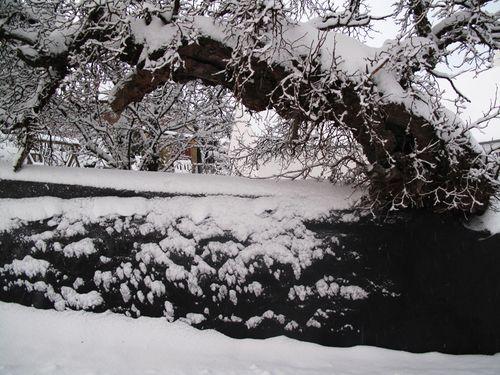 Sne Svaneke_0347